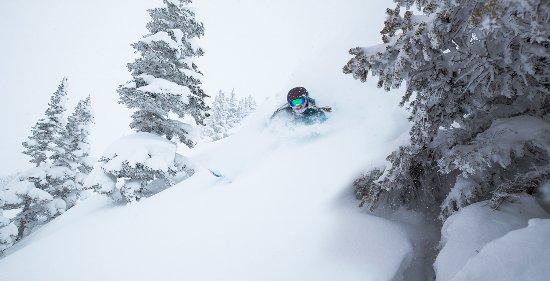 Fresh powder at Alta Ski Resort, one of 10 Utah resorts within an hour of Salt Lake Internationa