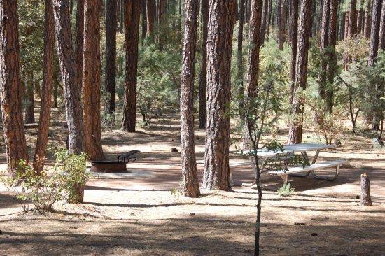 Landscape - Picture of Ponderosa Campground, Payson - Tripadvisor