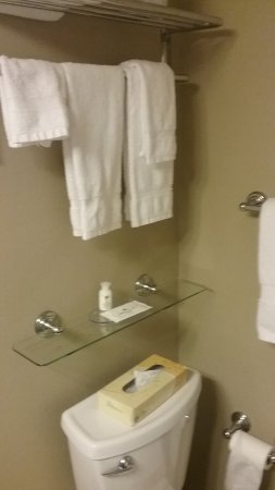 Lakeshore Inn: good use of space in small bath and updated colors