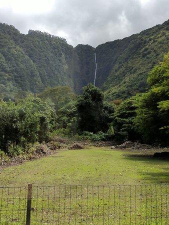 Waipio Na'alapa Trail: Waipi'o Valley, a lovely waterfall
