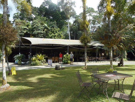 Diwan, Australia: Lawn and cafe