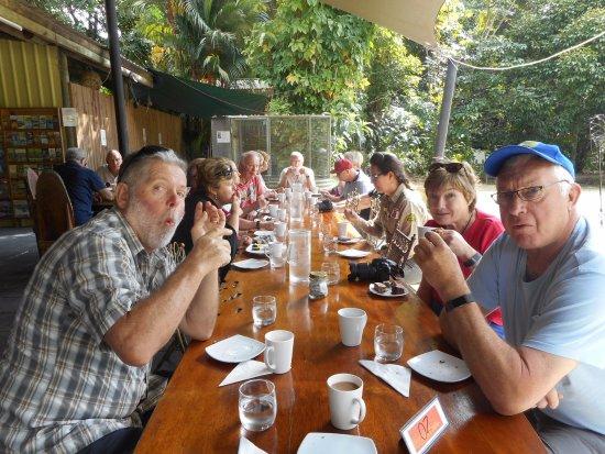 Diwan, Australia: Morning tea