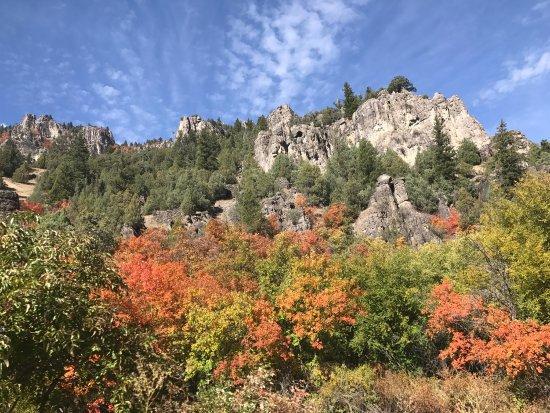 Logan Canyon Scenic Drive