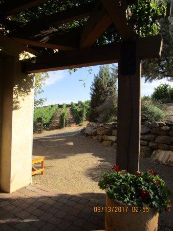 La Stella Winery: Lovely vistas.