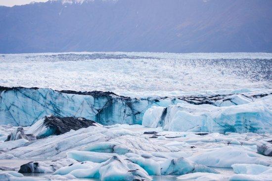Knik Glacier Tours 사진