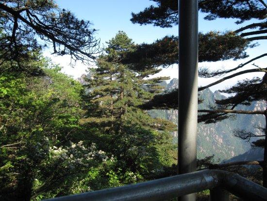 Mt. Huangshan (Yellow Mountain): view