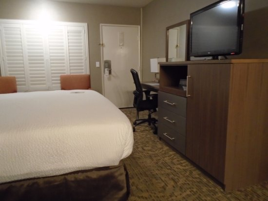 Best Western Plus Anaheim Inn: TV, Fridge in cabinet