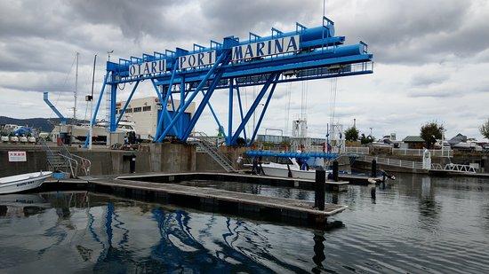 Otaru Port Marina