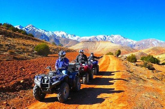 Excursion d'une demi-journée en quad...