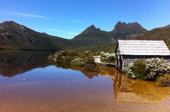 Cradle Mountain and Lake St Clair - Walking and Wildlife Tour with...