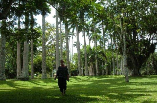 Jardines Botánicos Aburi y Shai Hills...