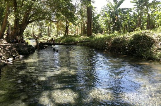 Aguas Agrias - Excursion de source d'eau fraîche et...