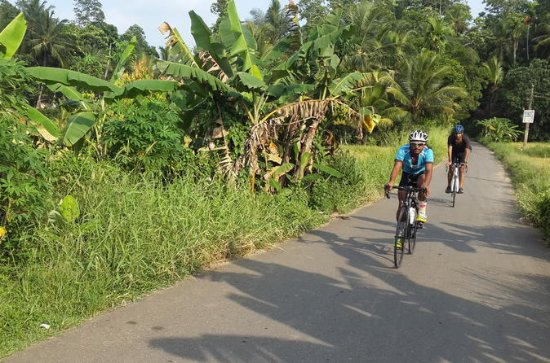 Sporting Cycling Tour in Galle