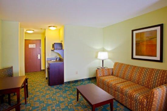 Holiday Inn Express Hotel & Suites Thornburg-S. Fredericksburg: Suite - Sitting & Wet Bar Area
