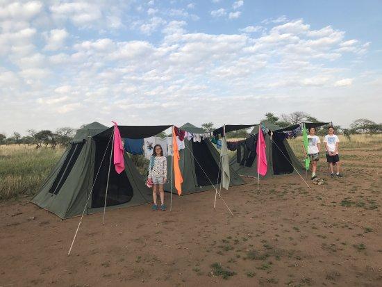 Safaris-R-Us: photo1.jpg