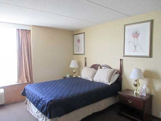North Aurora, IL: Guest Room