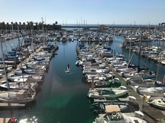 Shade hotel bewertungen fotos preisvergleich redondo - Bluewater grill seafood restaurant oyster bar ...