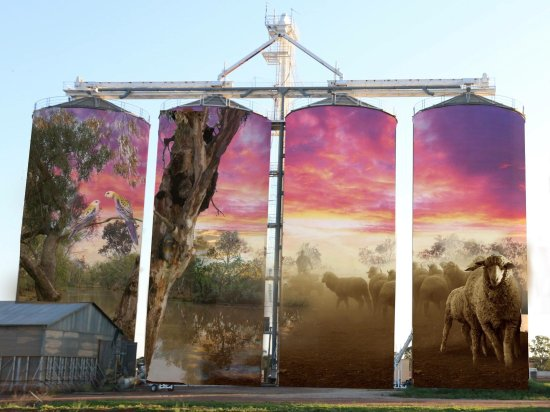 Thallon, أستراليا: Grain Silos