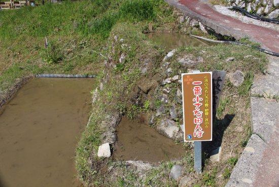 Maruyama Senmai Rice Field: 一番小さな田んぼ 水たまり?無理やり作った感じが・・・