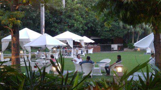 The Claridges New Delhi: Late Afternoon Cocktails on the Lawn - beware the bugs