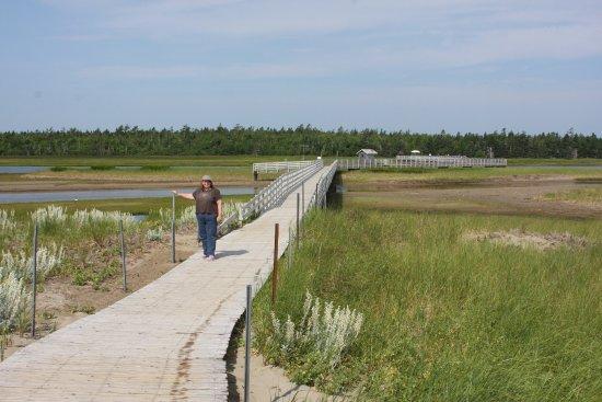 Saint-Louis-de-Kent, Canada: The boardwalk from Kelly's Beach to the parking lot.