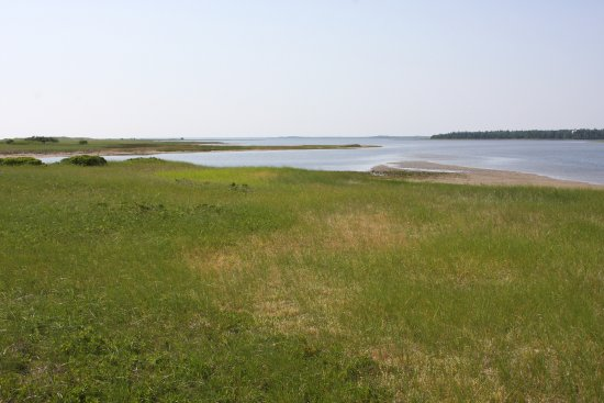 Saint-Louis-de-Kent, Canada: Salt marsh.