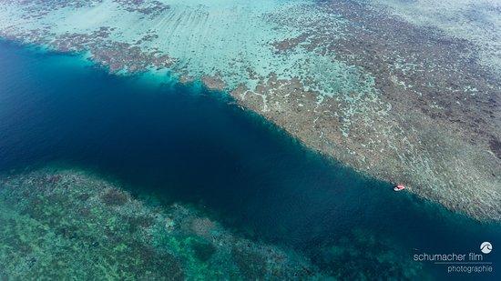 Colonia, Stati Federati di Micronesia: Tauchplatz Goofnuw Channel
