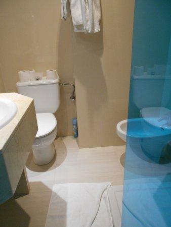 espace entre le lavabo et la paroi de douche (SDB de +/- 4m²)