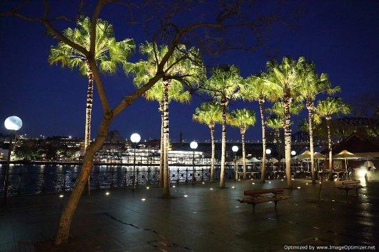 InterContinental Sydney: Circular quay at dawn
