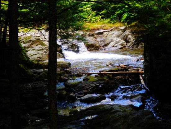 Westfield, VT: stream near our tent sites