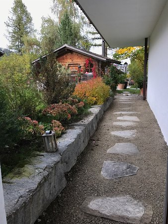 Saanenmoser, Swiss: photo7.jpg
