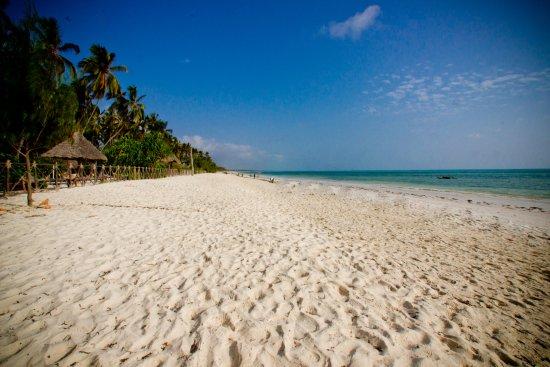 Paradise Beach Resort Zanzibar Reviews