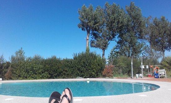 Foto de La Fattoria di Tirrenia Country Resort