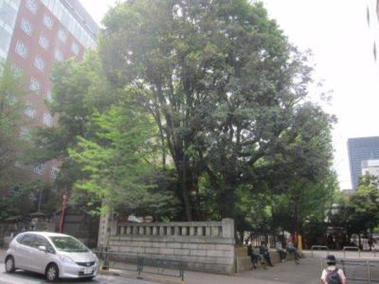 Hanazono Shrine: 自然のまま