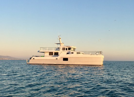 Right Outside of DANA POINT HARBOR, CA, a 😍 Beautiful SAVANAH Catamaran Yacht!