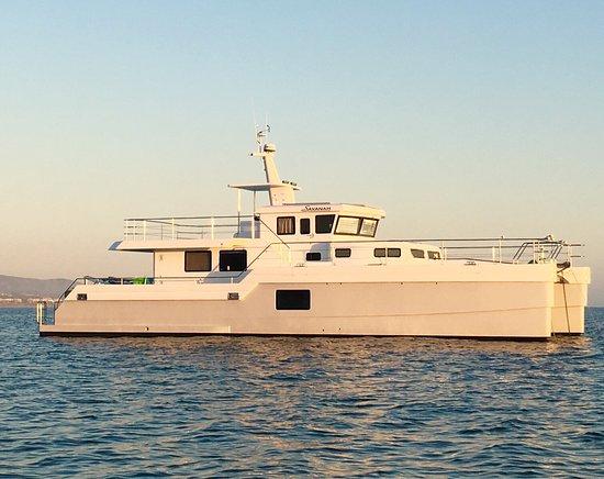 Right Outside of DANA POINT HARBOR, CA, a 😍 Beautiful SAVANAH Catamaran Yacht!