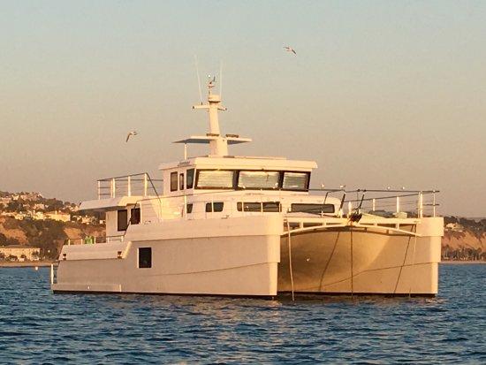 Dana Point, كاليفورنيا: Right Outside of DANA POINT HARBOR, CA, a 😍 Beautiful SAVANAH Catamaran Yacht!