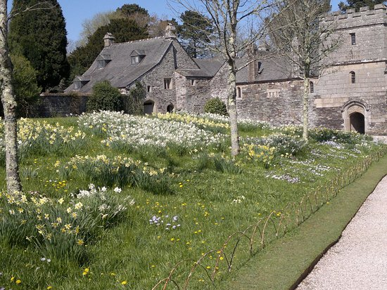 St Dominick, UK: In the Spring