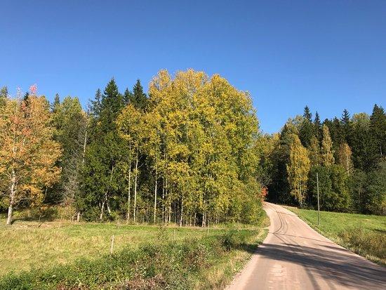 جنوب فنلندا