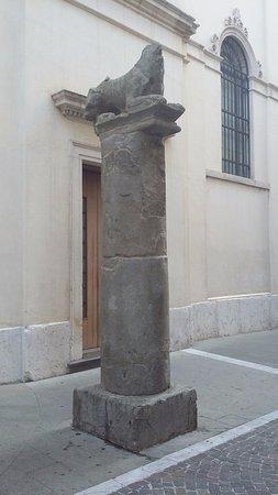 La Gatta di Padova