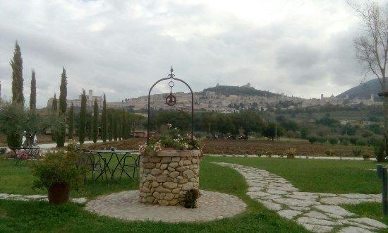 All'Antica Mattonata: Stupenda vista della città di Assisi