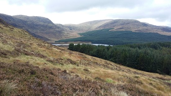 Galloway Forest Park Photo