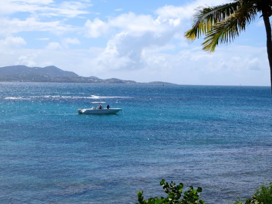 Christiansted, St. Croix: Our boat! | The Rose Table