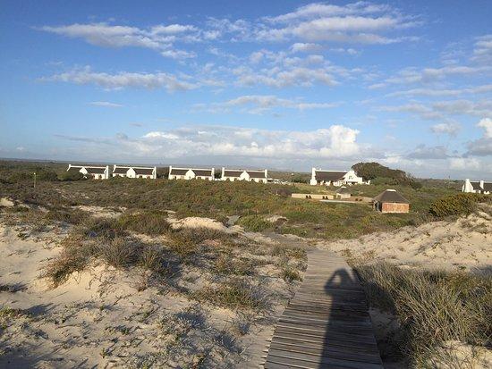 Eland's Bay, South Africa: photo1.jpg