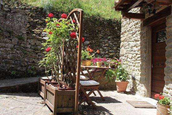 Ortignano Raggiolo, Italia: Giardino