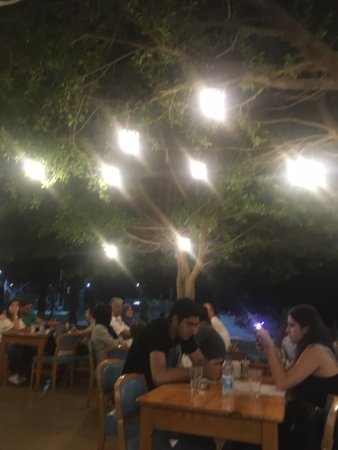 Petek Cafe