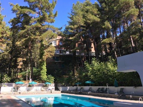 Forest Park Hotel: photo1.jpg