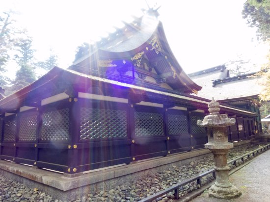 Katori, Japan: 香取神宮 御本殿の後姿