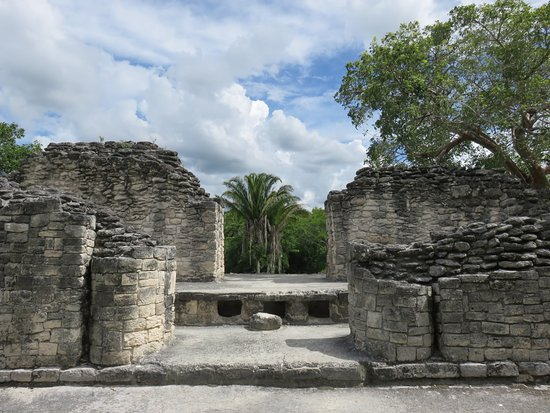 Quintana Roo, Mexico: Belle conservation
