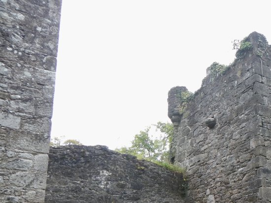 Carey's Castle: awesome structure
